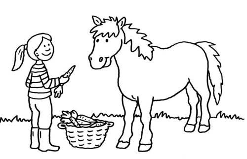 Kostenlose Malvorlage Pferde: Mädchen füttert Pferd mit Karotten