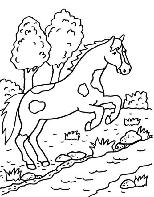 Kostenlose Malvorlage Pferde: Pferd springt über einen Bach zum