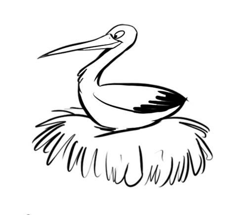 Kostenlose Malvorlage Vögel Storch In Seinem Nest Zum Ausmalen