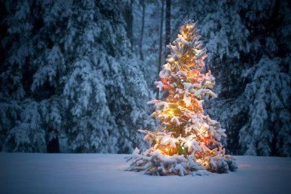 Gedichte Zu Weihnachten.Gedichte Fur Weihnachten